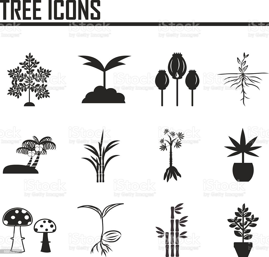 Tree icons vector art illustration