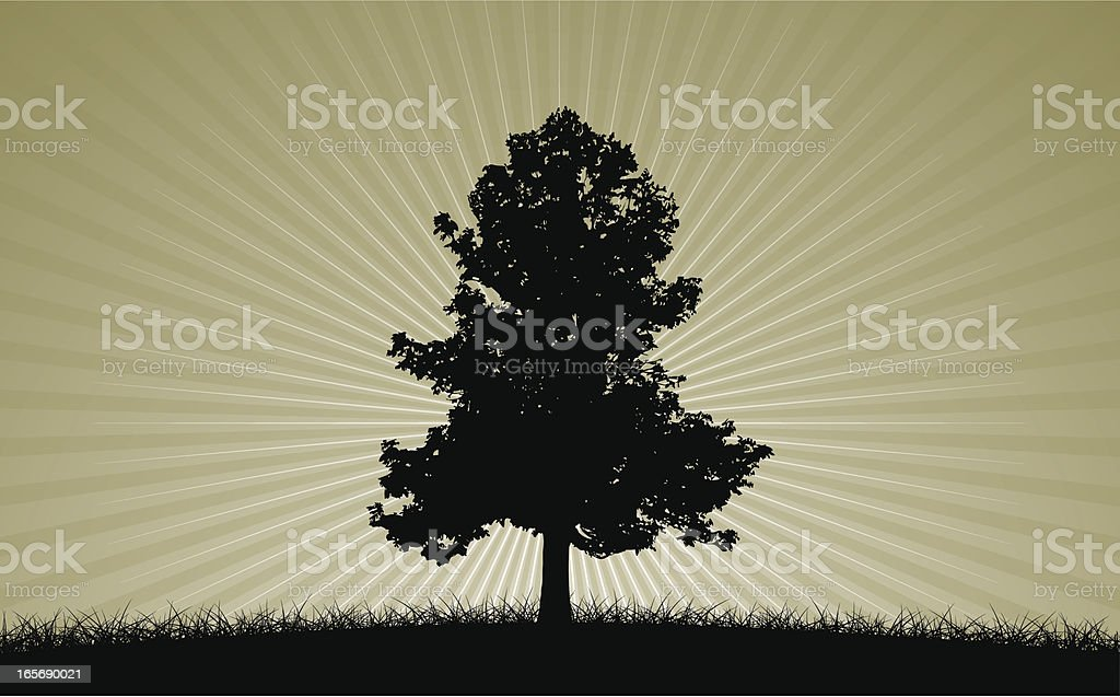 Tree in a field royalty-free tree in a field stock vector art & more images of backgrounds