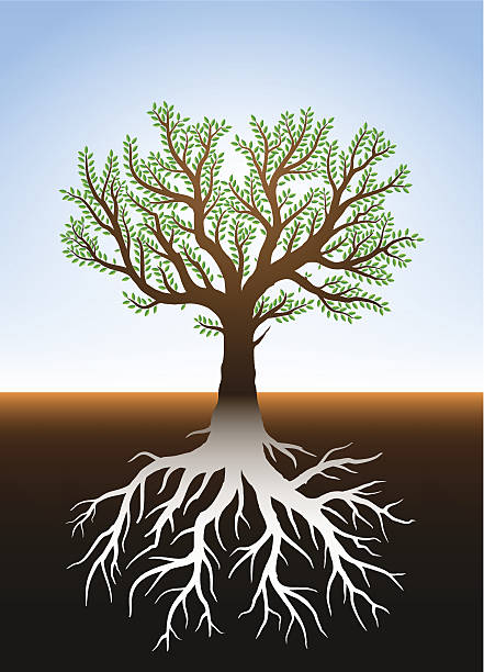 Tree in earth and it's roots vector art illustration