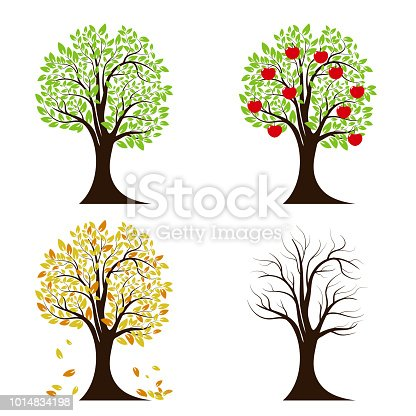 Tree in four seasons. Spring, summer, autumn, winter. Isolated on white background Vector illustration