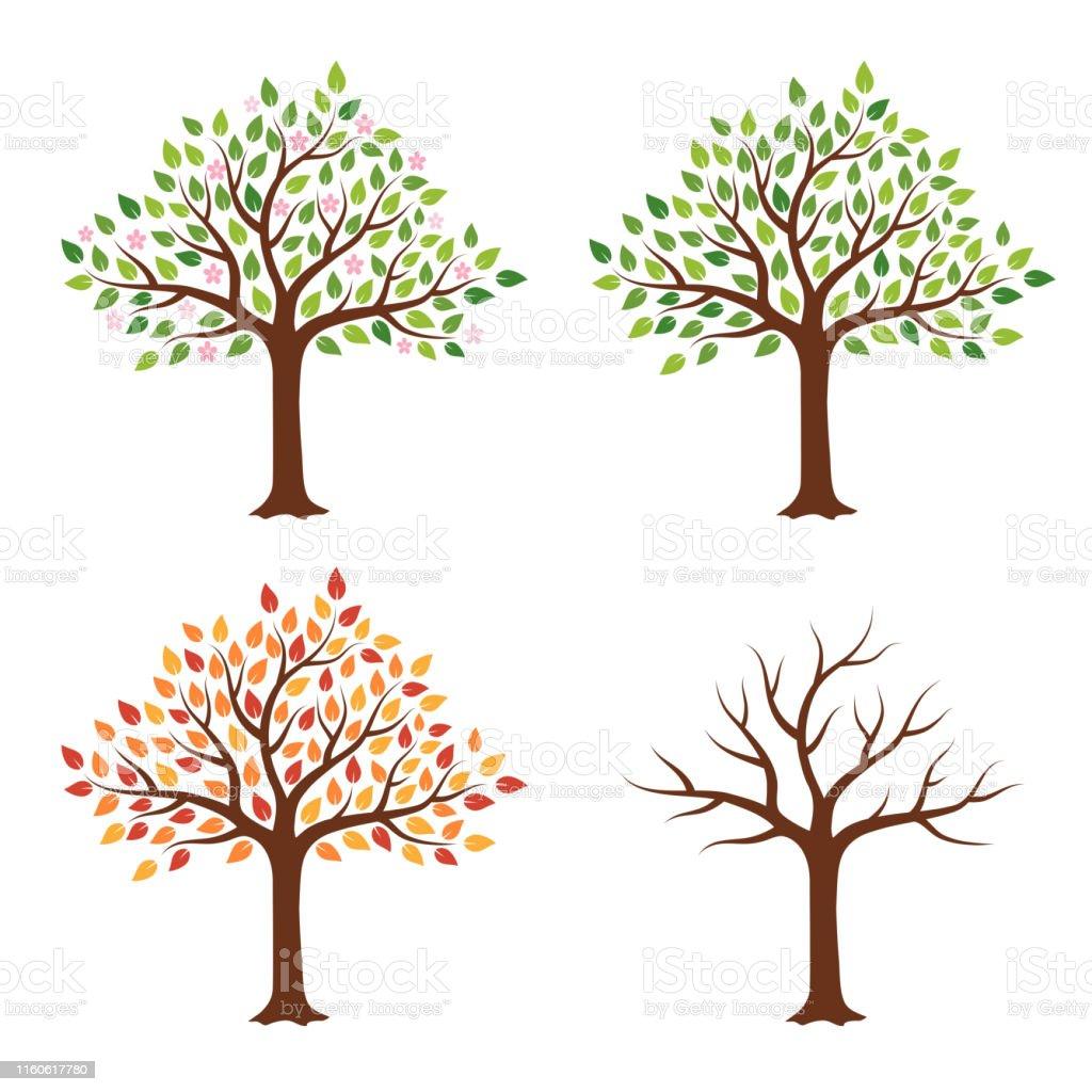 Boom in vier seizoenen-lente, zomer, herfst, winter. Geïsoleerd op witte achtergrond. - Royalty-free Abstract vectorkunst