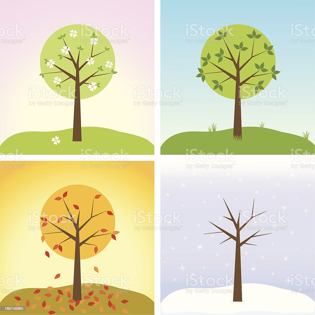 Tree in four seasons vector art illustration