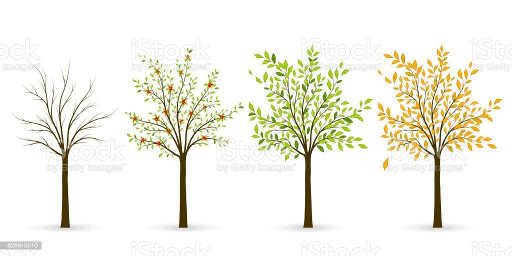 Tree in four seasons - winter, spring, summer, autumn. vector art illustration