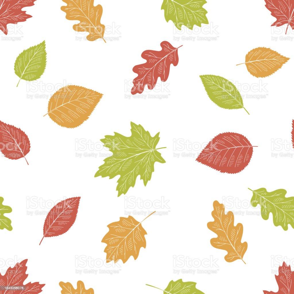 Ilustración De Vector De La Ilustración árbol Hoja Color Gráfico De