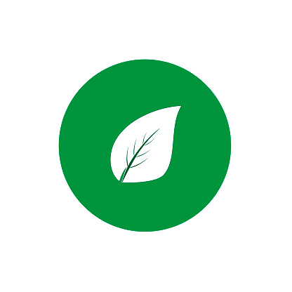 Tree leaf round icon vector