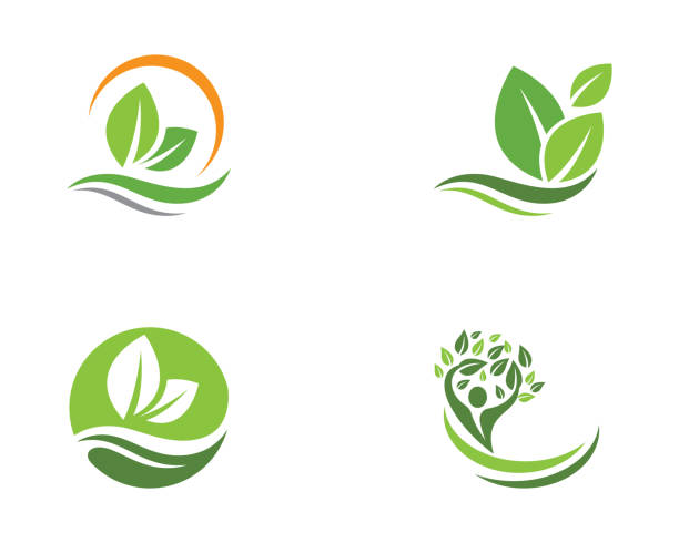 illustrazioni stock, clip art, cartoni animati e icone di tendenza di tree leaf vector logo design - foglie