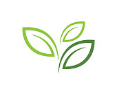 Tree leaf vector logo design, eco-friendly concept.