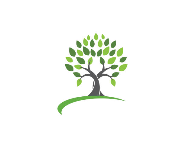 Tree leaf vector   design Tree leaf vector   design, eco-friendly concept. trees stock illustrations