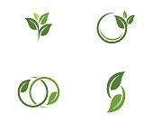 Tree leaf vector   design, eco-friendly concept.