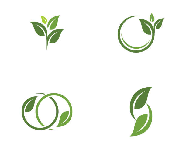 tree leaf vector logo design - sustainability stock illustrations