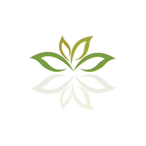 Tree leaf vector logo design, eco-friendly concept. vector art illustration