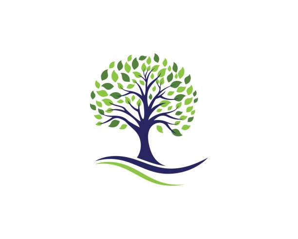 tree leaf vector logo design - tree stock illustrations