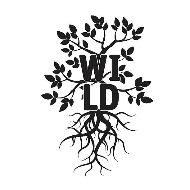 ilustrações, clipart, desenhos animados e ícones de árvore, leafs, raízes e texto de vida selvagem. - fontes de tatuagem
