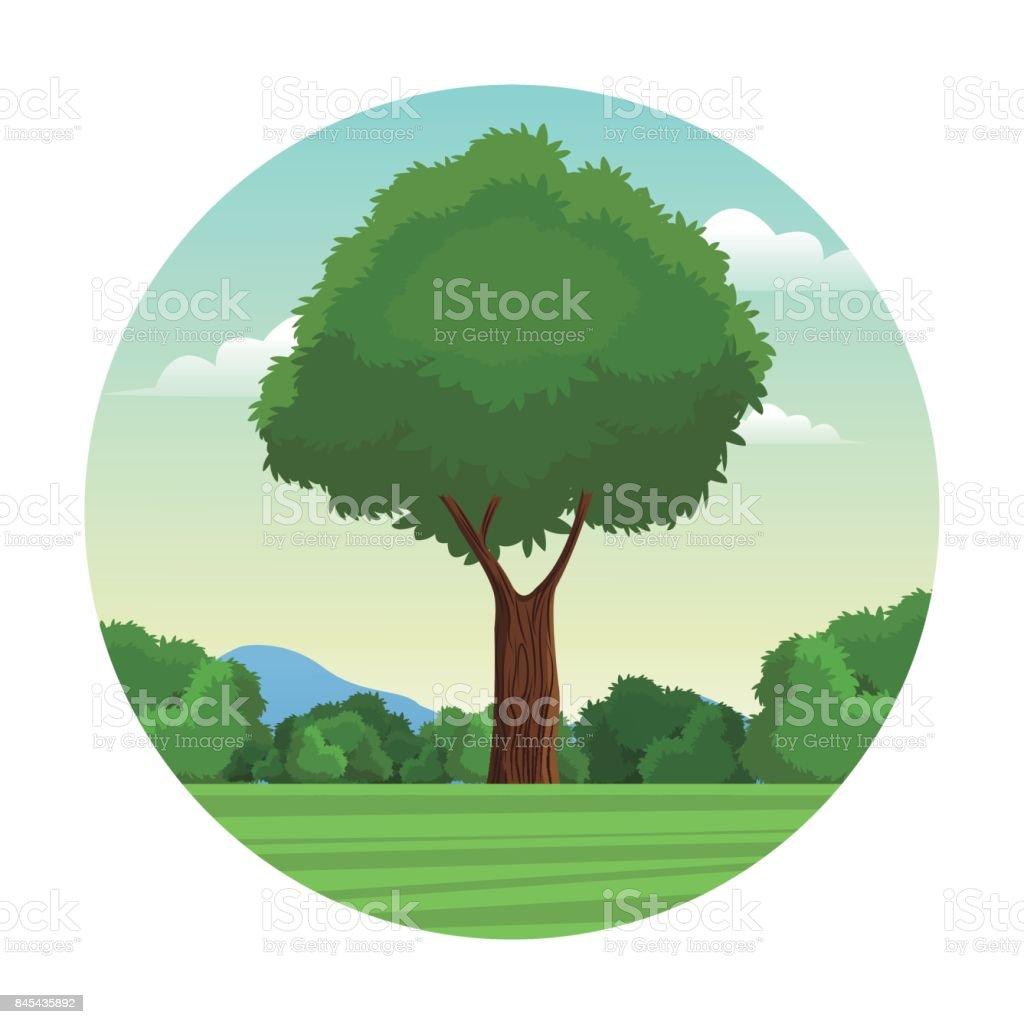 tree leafy forest landscape stamp vector art illustration