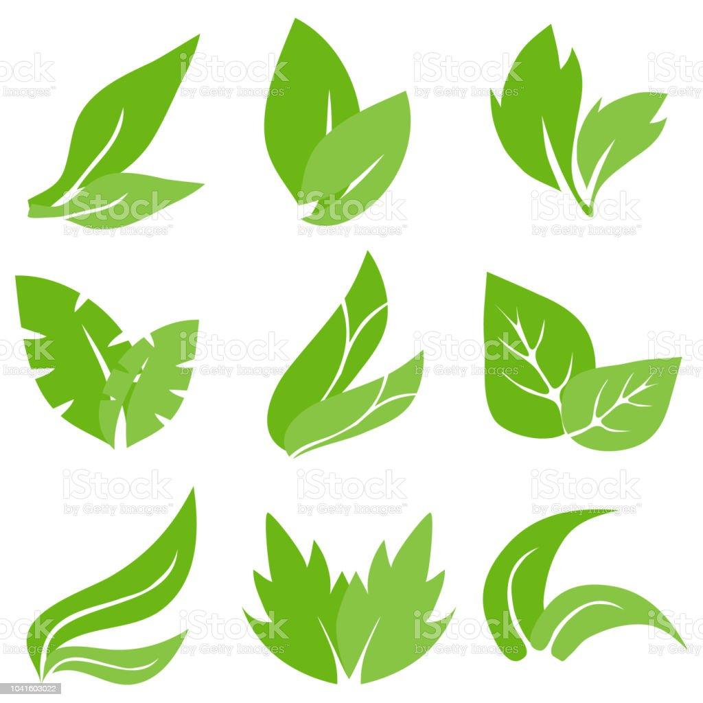 Ilustración De Hojas De Los árboles Hojas Verdes Realista Hojas De