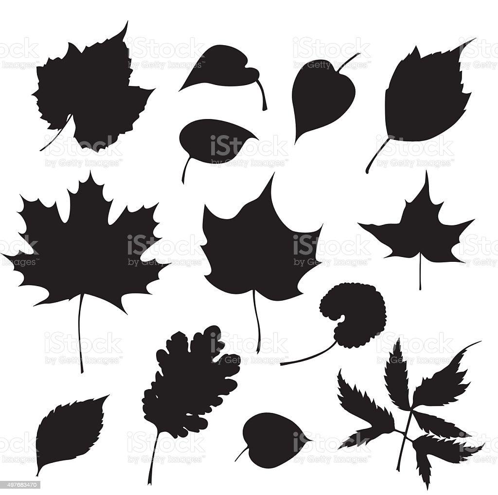 Tree Blätter – Vektorgrafik
