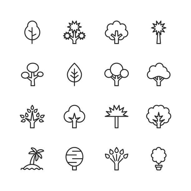 Tree Line Icons. Editable Stroke. Pixel Perfect. For Mobile and Web. Contains such icons as Tree, Forest, Nature, Outdoors, Environment, Ecology. 16 Tree Outline Icons. trees stock illustrations