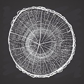 Tree log, wood growth rings grunge texture vector illustration on chalkboard background.