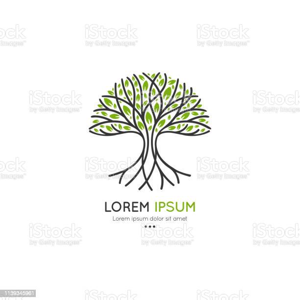 Tree logo abstract and modern illustration isolated vector great for vector id1139345961?b=1&k=6&m=1139345961&s=612x612&h=cli kdwupu8fccabnmyqmmegrs0ewd27tjosp5vmjxy=