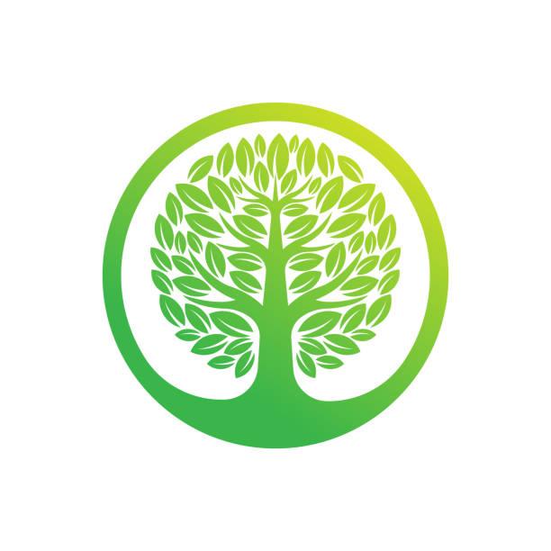 ilustrações, clipart, desenhos animados e ícones de ilustração vetorial de design do logotipo da árvore. resumo árvore logo vetor em conceito de design criativo para natureza, agricultura e negócios agrícolas. logotipo da árvore, ícone, ilustração de design de vetor de símbolos e símbolos. - conceitos e temas