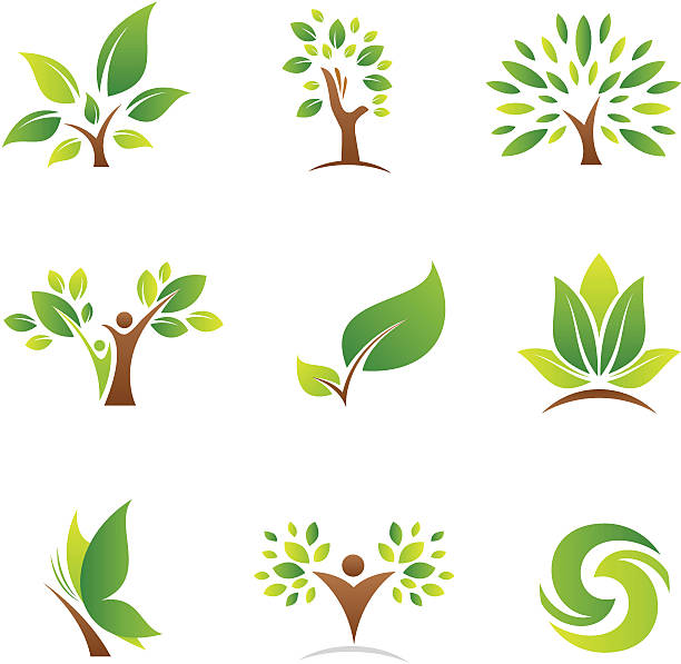 Tree of life logos and icons vector art illustration
