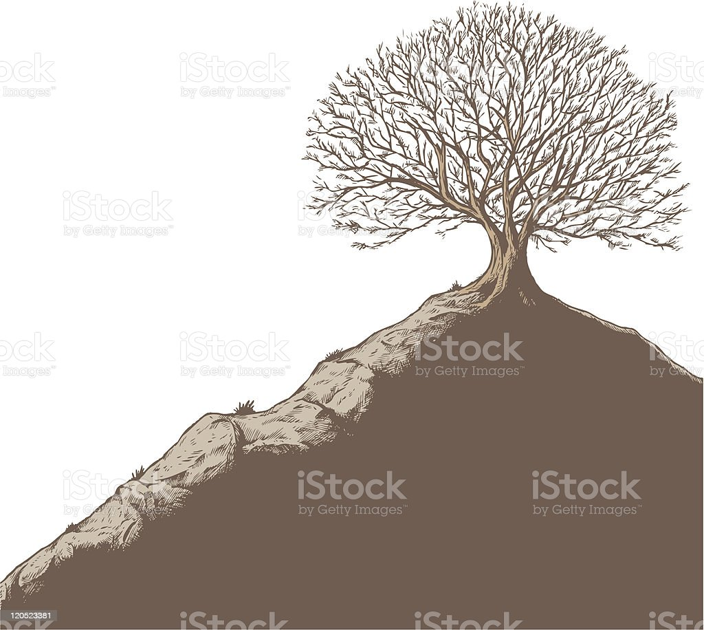 Tree on a hill vector art illustration
