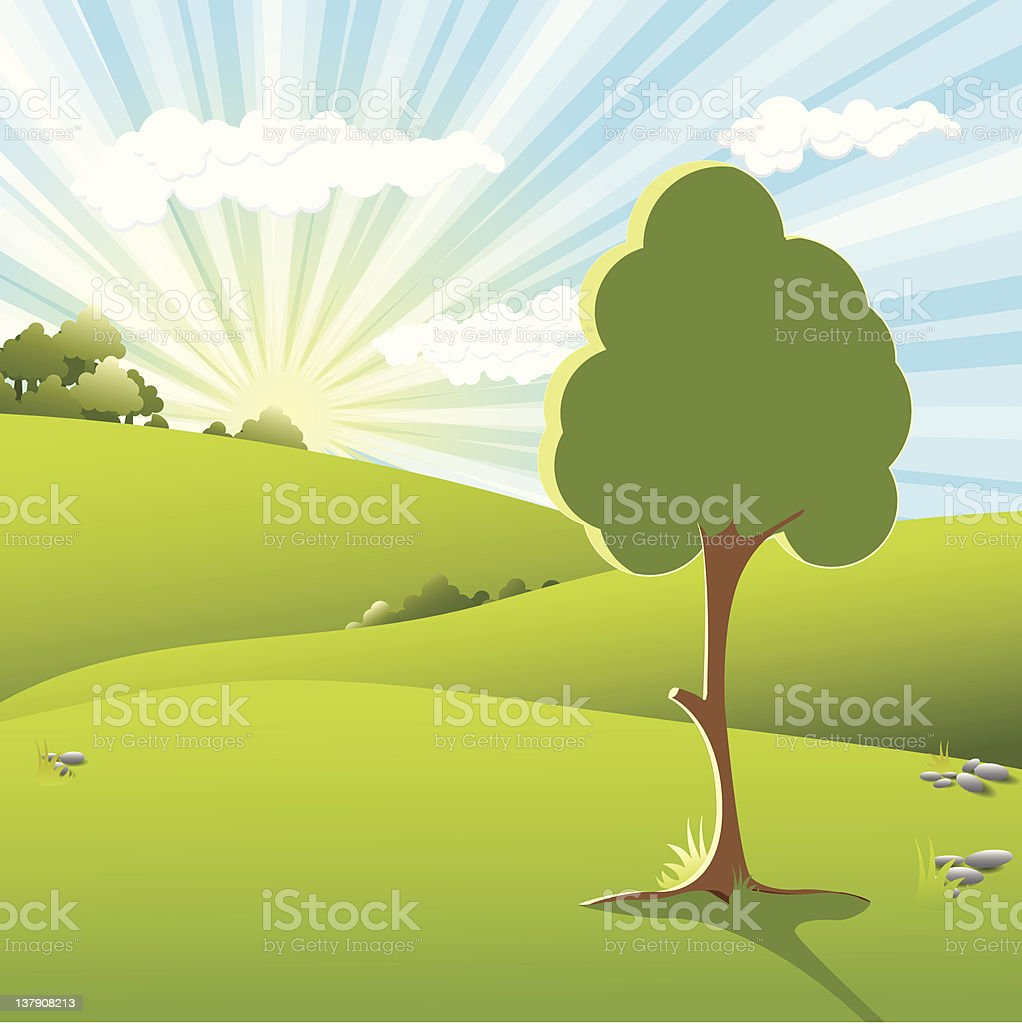 tree on sundown royalty-free stock vector art