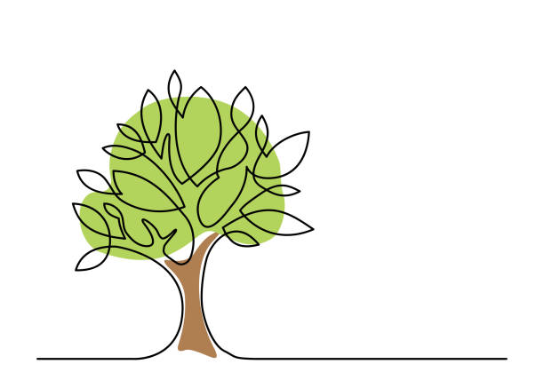 tree one line color - nature stock illustrations