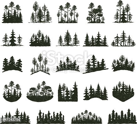 Tree outdoor travel black silhouette coniferous natural badges, tops pine spruce branch cedar and plant leaf abstract stem drawing vector illustration. Panorama scene horizon decoration.