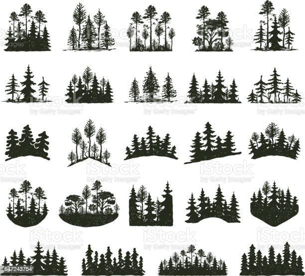 Tree outdoor travel black silhouette vector id647243754?b=1&k=6&m=647243754&s=612x612&h=rivcnuuaa3dgqrd2ig8wl7q27ax1trdqp5douto48la=