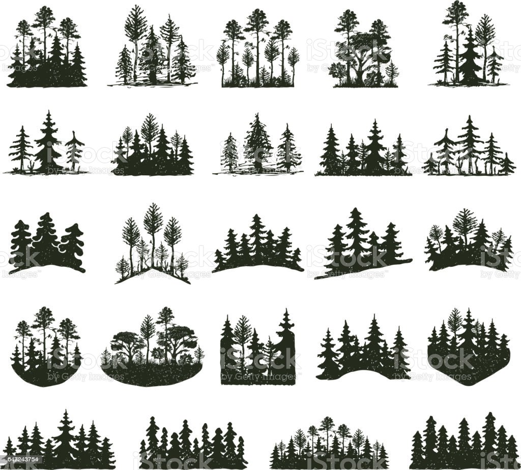 royalty free pine tree clip art vector images illustrations istock rh istockphoto com Pine Tree Branch Clip Art pine tree silhouette clip art vector