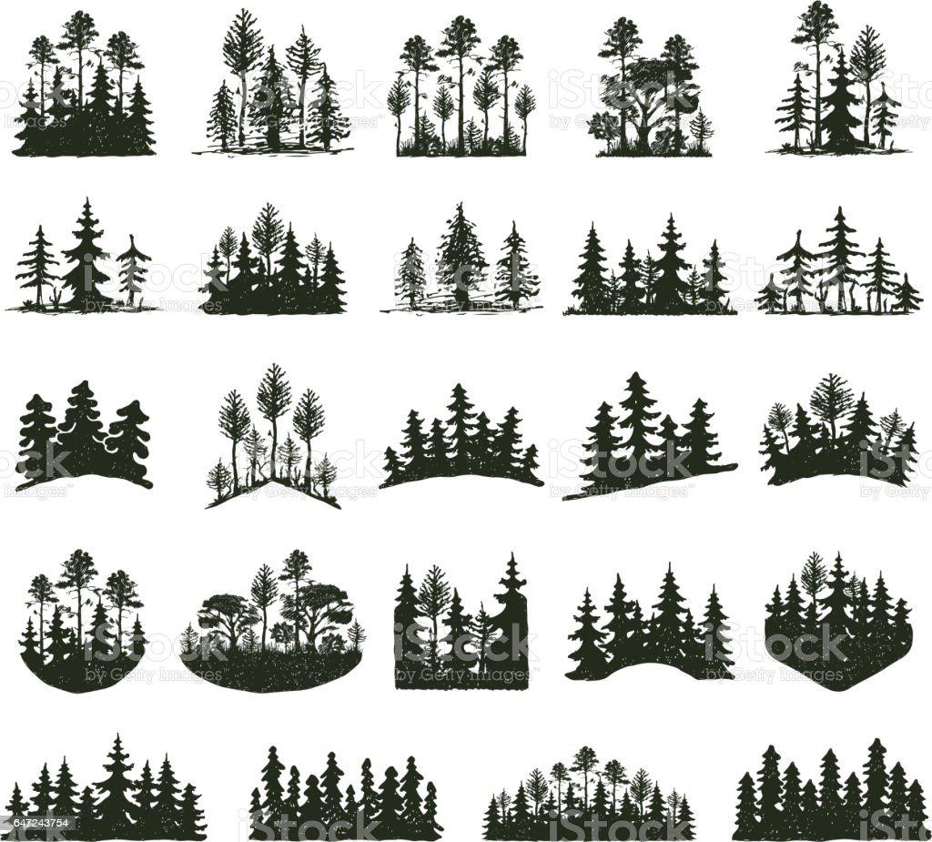 royalty free pine tree clip art vector images illustrations istock rh istockphoto com pine tree clip art images pine tree clip art images