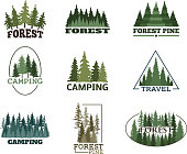 Tree outdoor travel green silhouette forest badge coniferous natural icon badge tops pine spruce vector