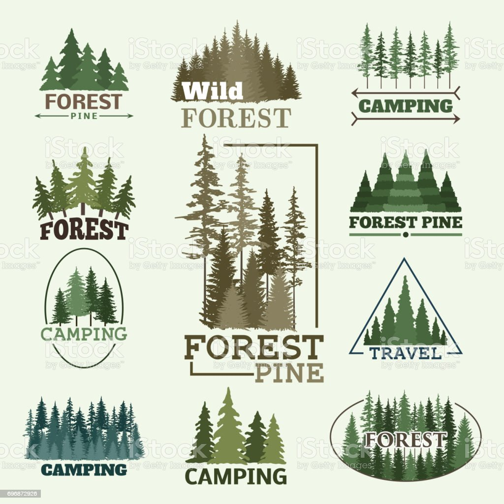 Tree outdoor travel green silhouette forest badge coniferous natural badge tops pine spruce vector vector art illustration