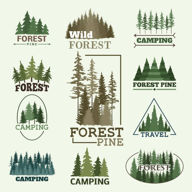 Tree outdoor travel green silhouette forest badge coniferous natural badge tops pine spruce vector Tree outdoor travel green silhouette forest coniferous natural badge tops pine spruce branch cedar and plant leaf abstract stem drawing vector illustration. Panorama scene horizon decoration. pine tree stock illustrations