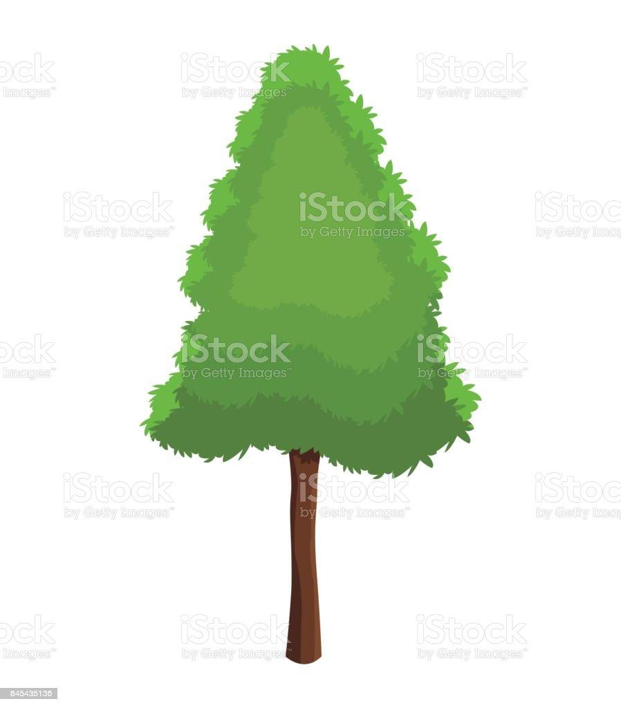 tree pine plant natural conservation vector art illustration