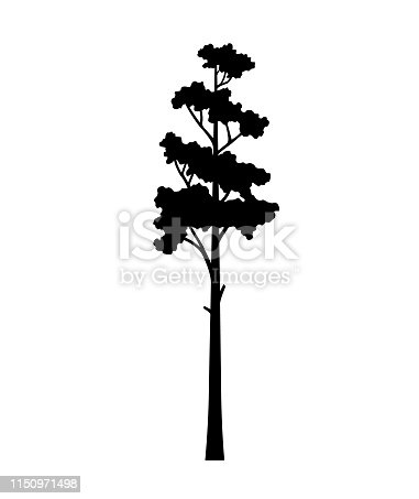 tree pine silhouette vector isolated, tree tattoo tribal design