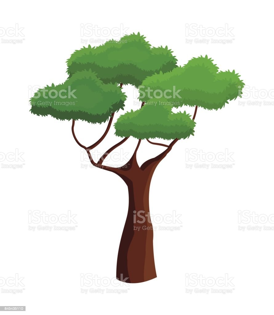 tree plant natural ecology branched vector art illustration