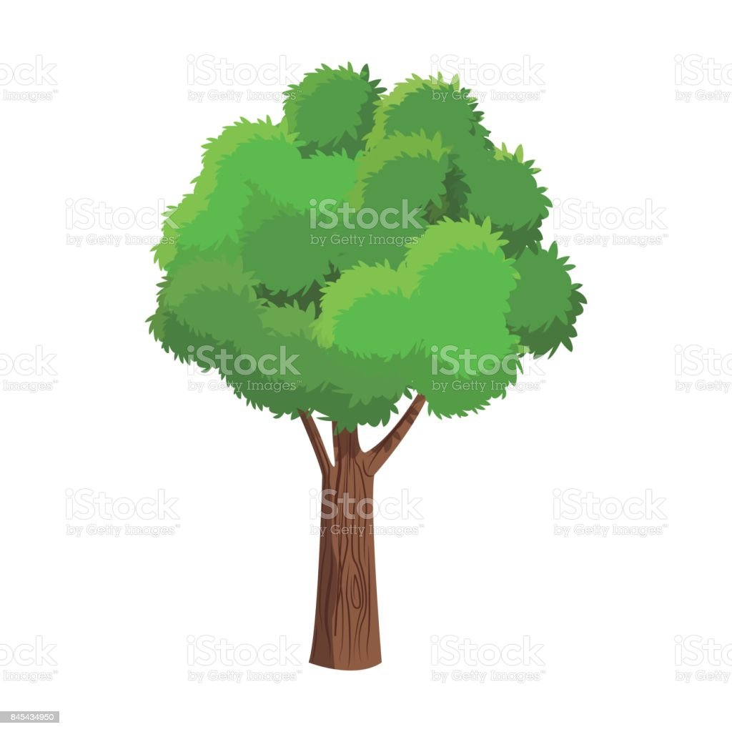 tree plant natural foliage ecology vector art illustration