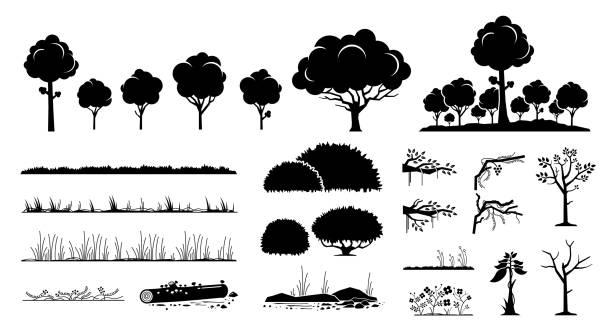 bildbanksillustrationer, clip art samt tecknat material och ikoner med träd, växter och gräs vektorgrafisk design. - buske