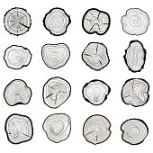 Tree Rings Set Saw Cut Trunk with Cracks and Black Lines Wooden Texture. Vector illustration