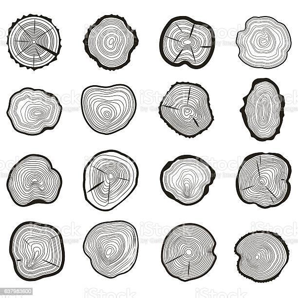 Tree Rings Set Saw Cut Trunk Vector Stockvectorkunst en meer beelden van Abstract
