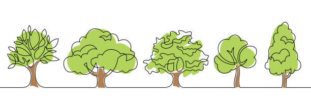 tree set one line color Set of trees - continuous line drawing. Vector illustration trees stock illustrations