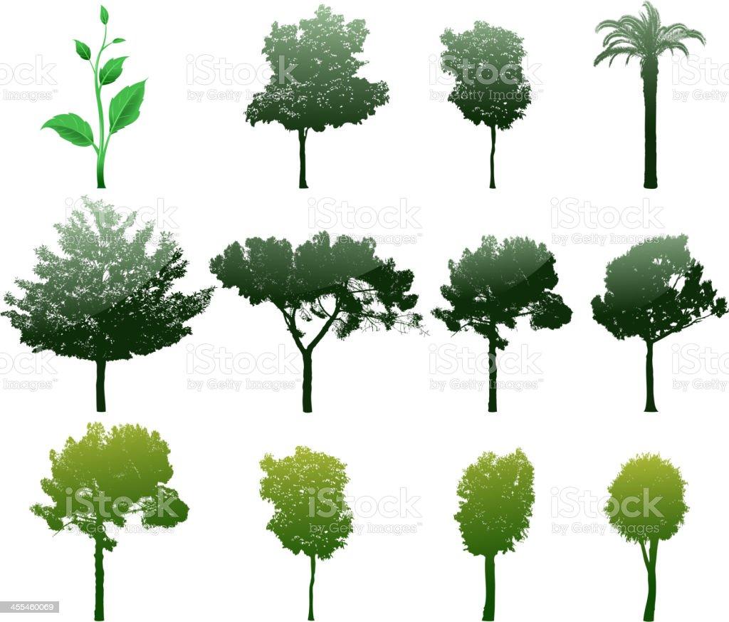 tree set royalty-free tree set stock vector art & more images of ash tree