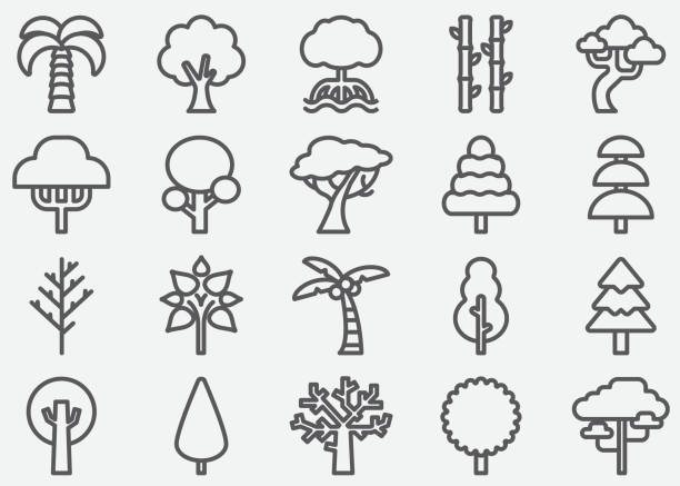 tree shape line icons - palm tree stock illustrations