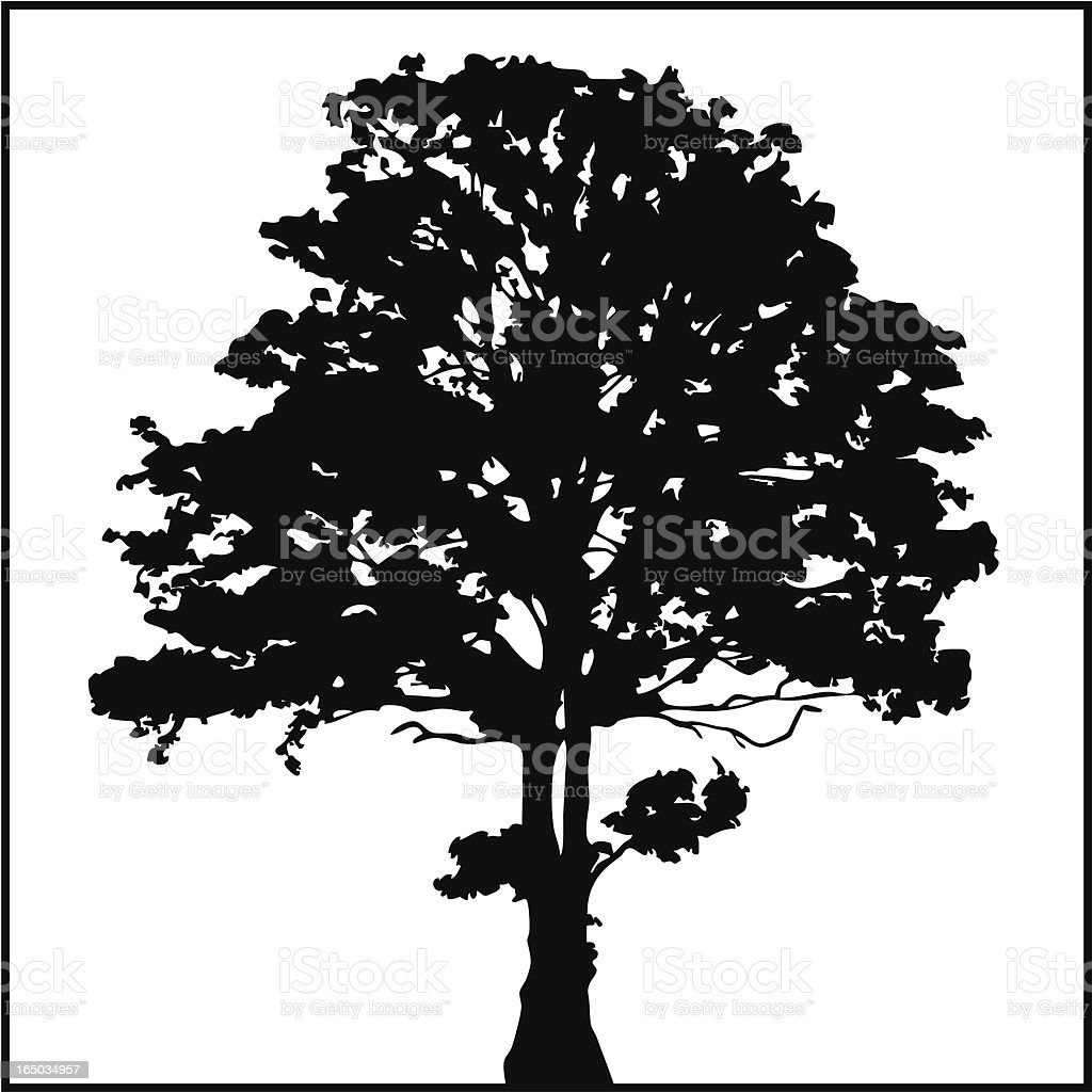 Tree Silhouette 02 royalty-free stock vector art