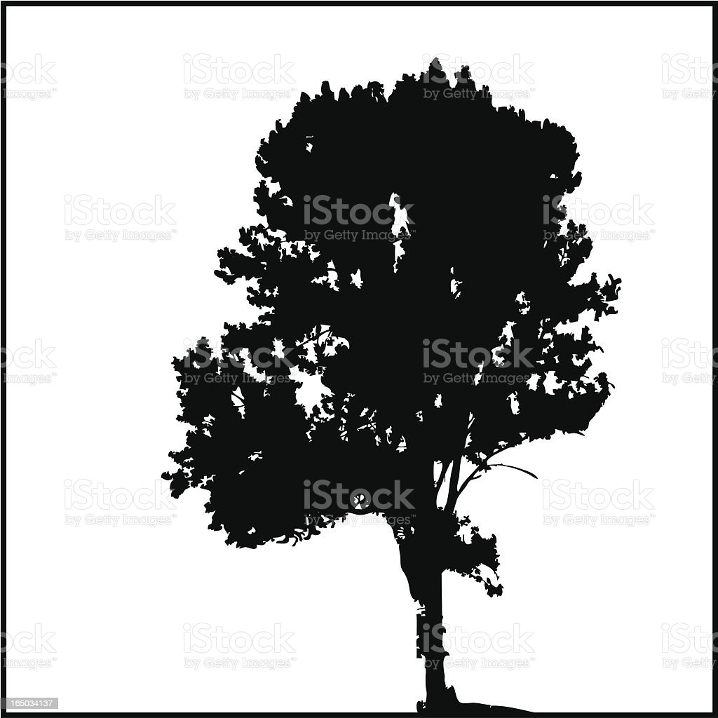 Tree Silhouette 06 royalty-free stock vector art