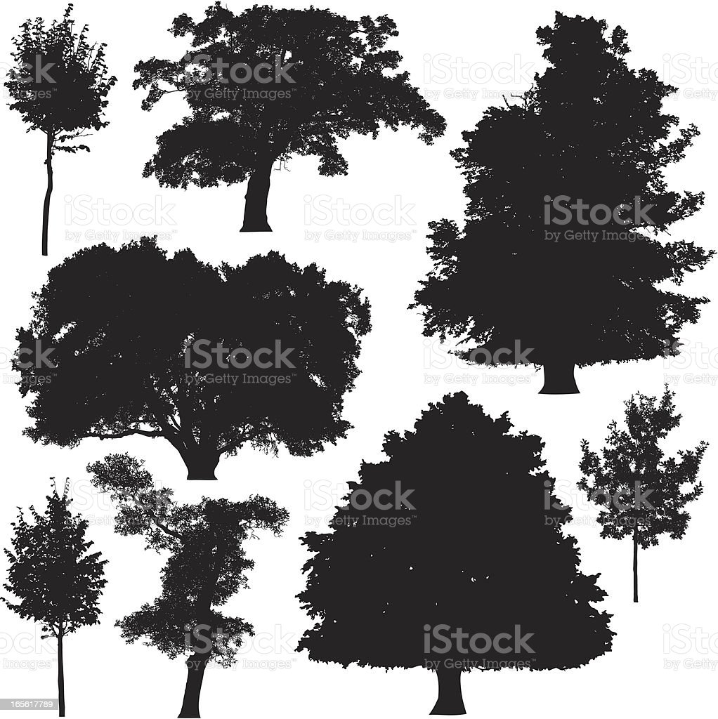 Tree silhouette collection 5 vector art illustration