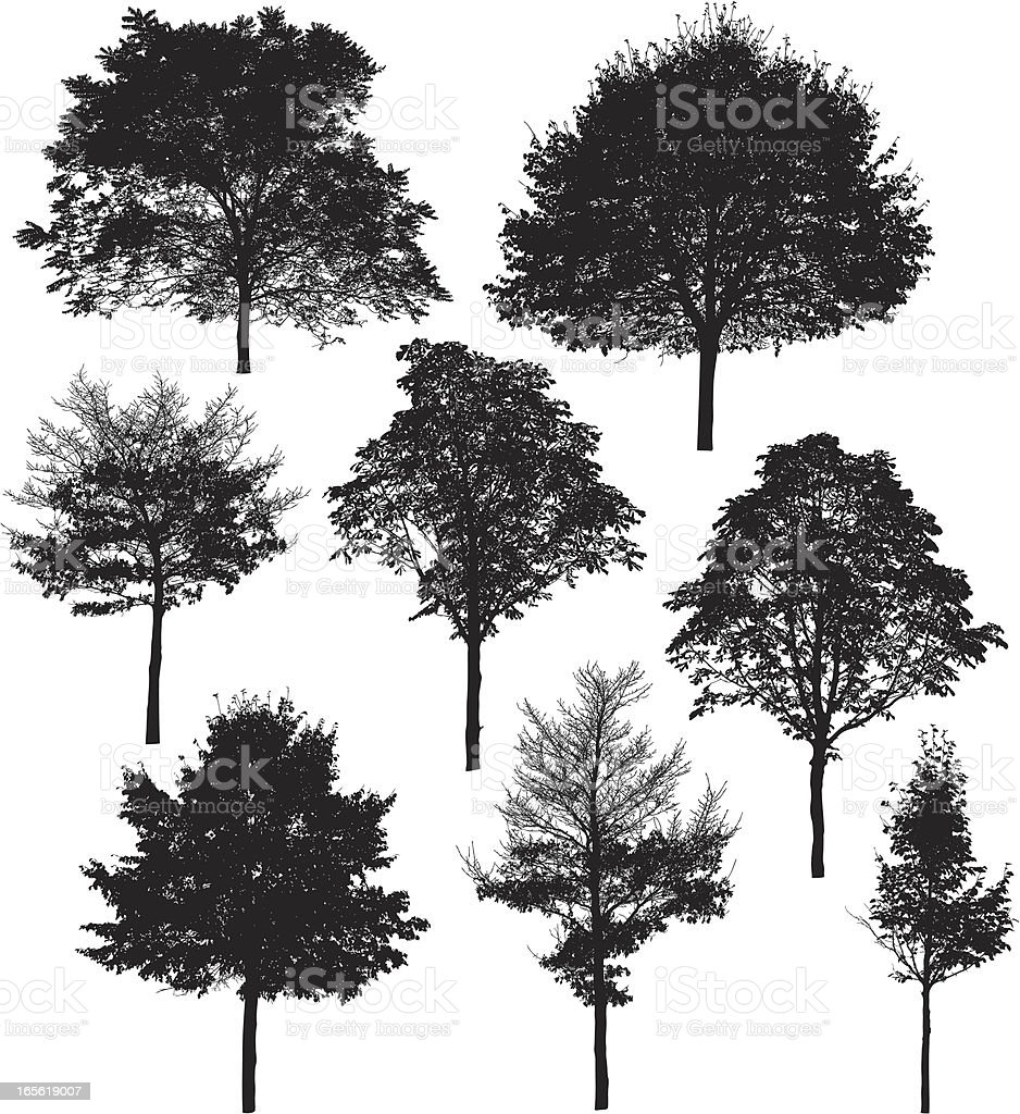 Tree silhouette collection 6 FALL vector art illustration