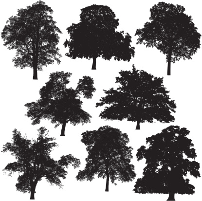 8 different tree silhouettes.
